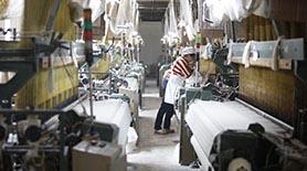 高产能全品类生产线—硬件投资规模行业领先